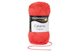 Catania 252 - kamélia
